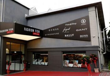 Schonenwerd Fashion Fish Bally Area