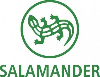 Salamander déstockage Paris Raspail